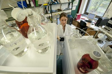 The laboratory where new catalytic bacteria are being developed
